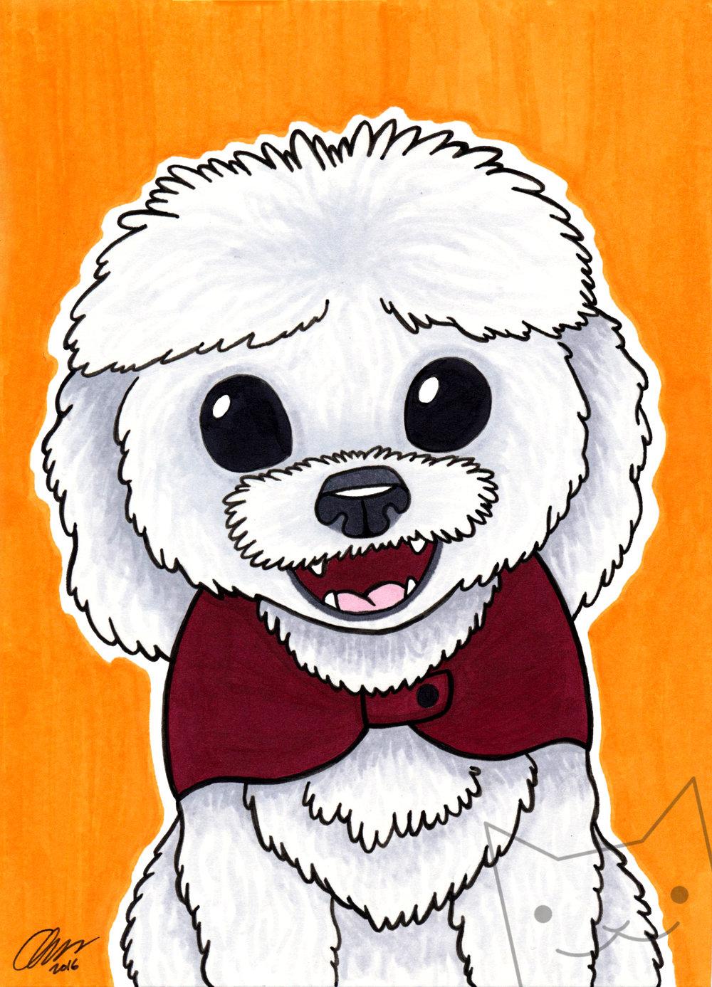 white pup.jpg
