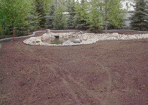 Grading and Drainage  Planet Plant It, Inc. has vast experience and equipment for grading and installing appropriate drainage as required by situation or design for both residential and commercial projects.  Let us help you with your erosion problems as well.