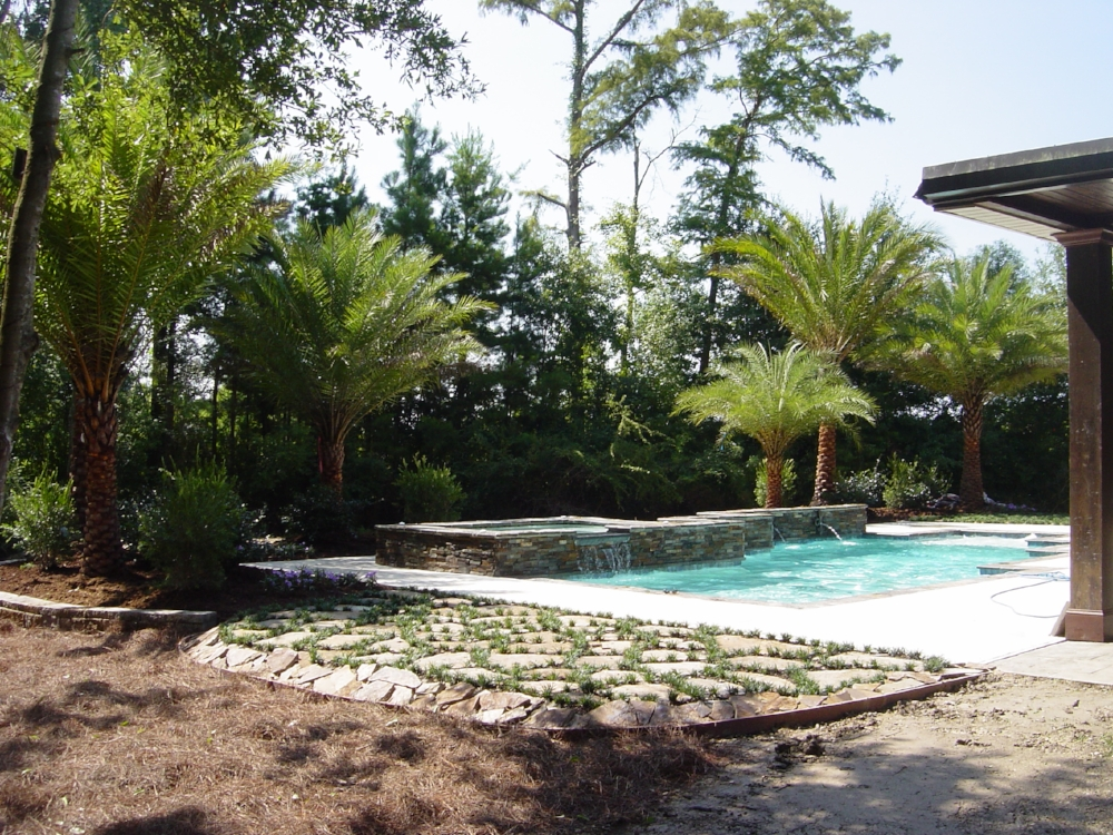 Transform your pool area to a tropical paradise this winter so you can enjoy this spring! Contact Planet Plant It, Inc. Landscape Services at  contact@planetplantit.com  or 225-252-4898.