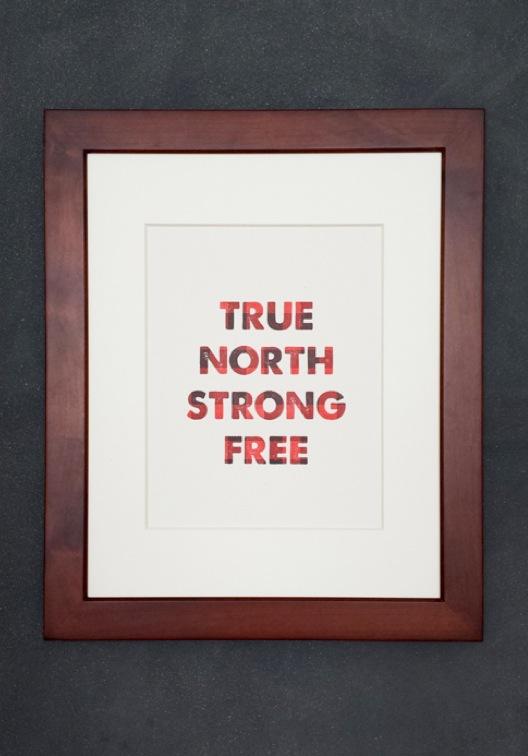 TNSF print.jpg
