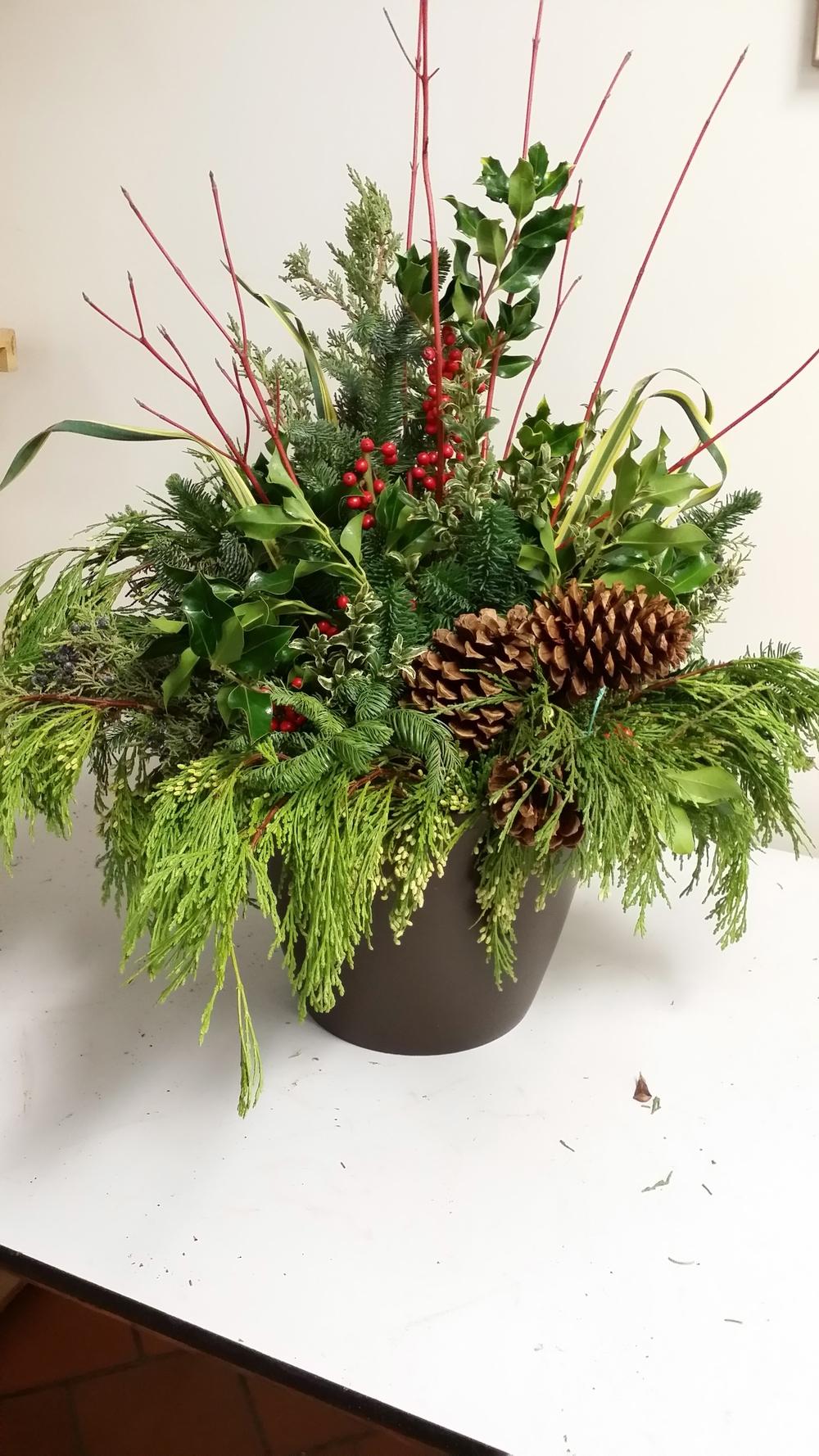 Tis the Season!! Seasonal greens add charm and elegance to your entryways!