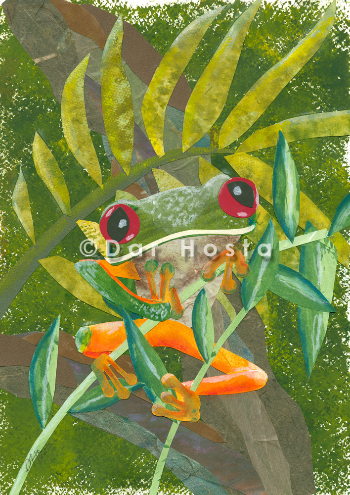 red-eyed-tree-frog-etsy.jpg