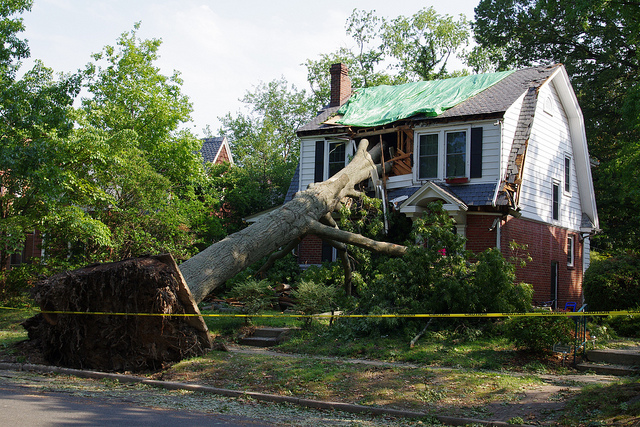 Hurricane Irene in RVA Photo by Will Weaver