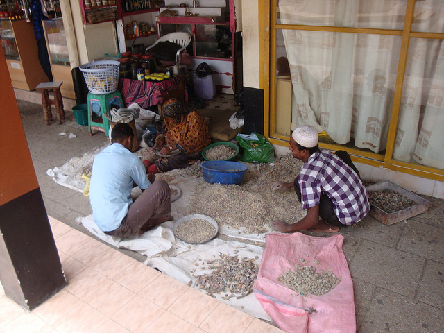 Elmorelian The Man from Salalah sorting frankincense in the old souk in Salalah