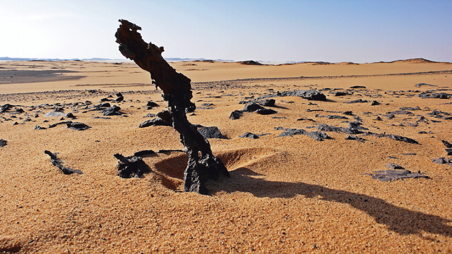 A patch of the Sahara Desert in Eastern Libya.     Photo:  American Survivor Guide .