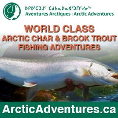 Arctic-Adventures-Sidebar-Ad-01.jpg