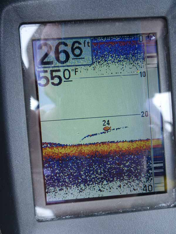 Fish finder showing water temperature, structure and fish depths.