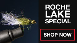 Roche-Lake-Special-Shop-Now-Button.jpg