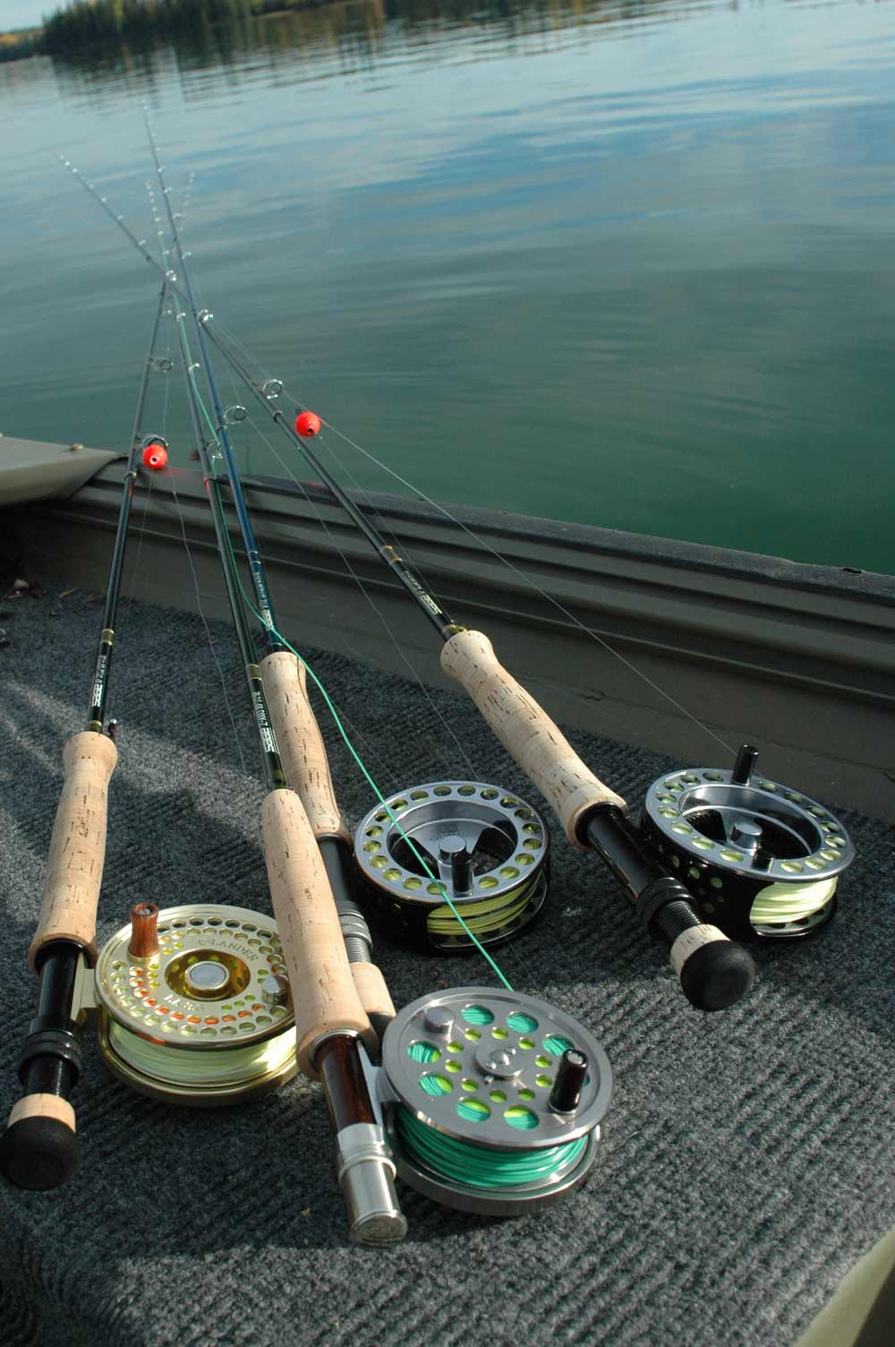 A variety of reels