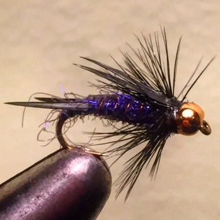 Don's Purple Prince Nymph