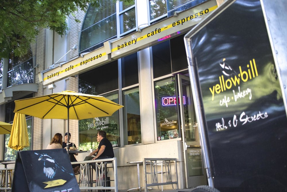 Yellowbill-13.jpg