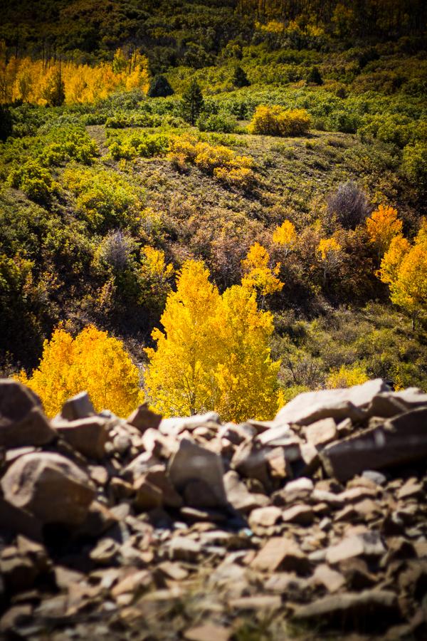 Telluride, CO l wanderingroot.com