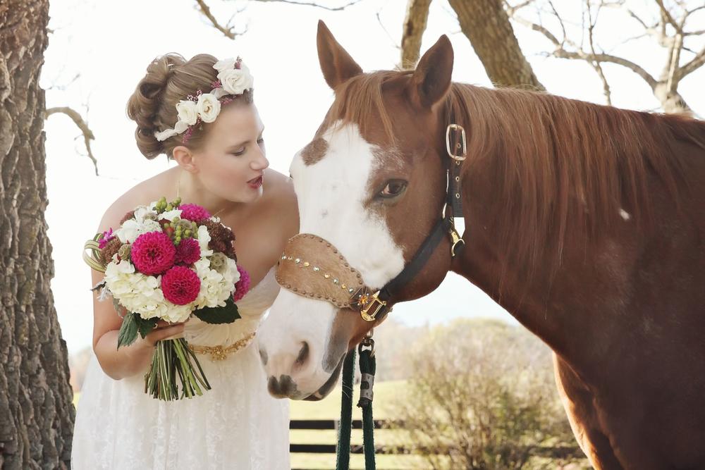 horsefinal.jpg