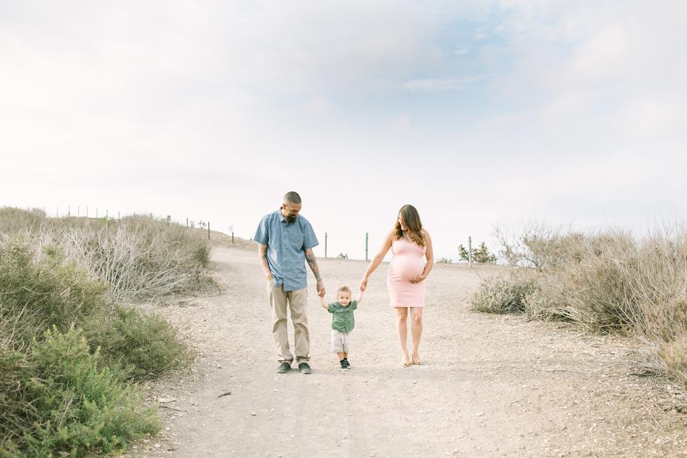 Palos-verdes-marternity-family-photography-lizztin