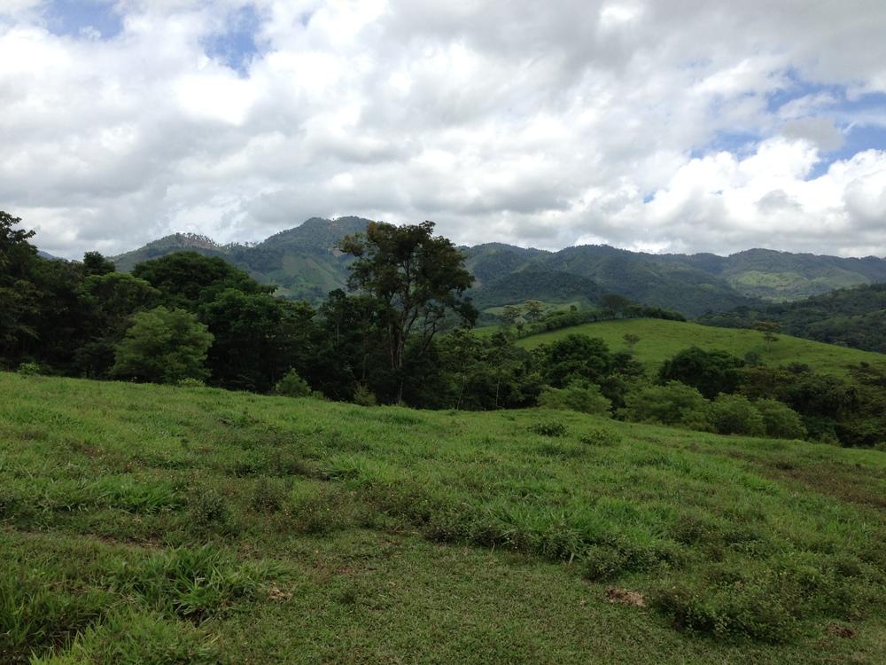 Finca-el-Cisne-Landscape-2.JPG
