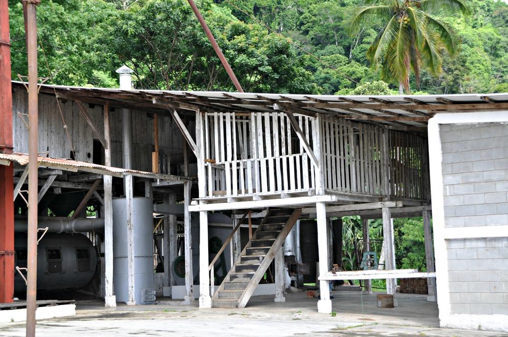 Coffee-Processing-Buildings-2.JPG