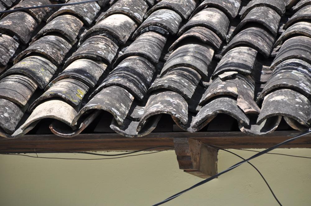 Although the clay tile roofs in Honduras tend to mold, I still like the look and texture