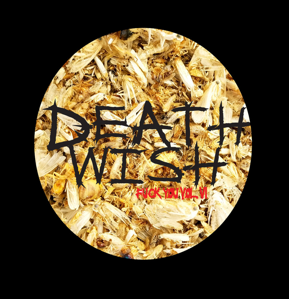 death wish cd volume 6 live free and dye.jpg