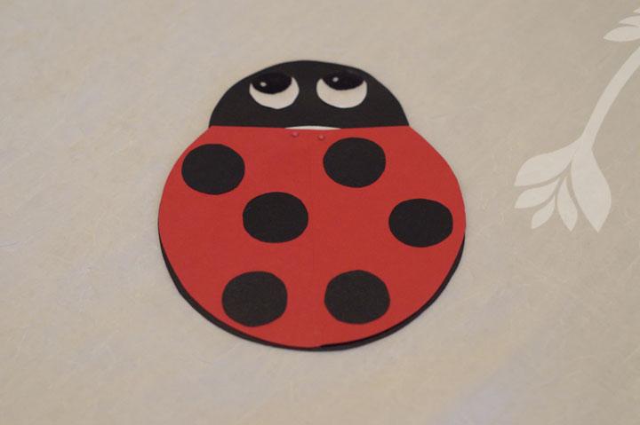 lady-bug_adri.jpg