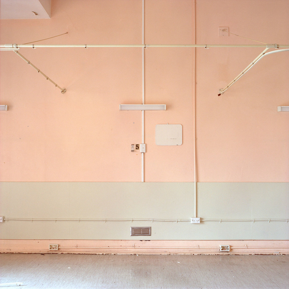pink-no-5.jpg