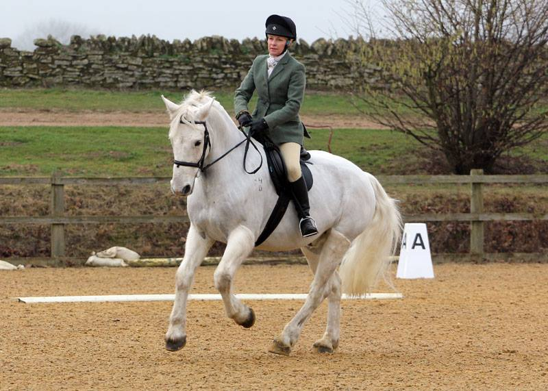 Rosie and Jake competing at the dressage competition at Wittering on Sunday 5th February 2017 -photo by Eriena Photography.
