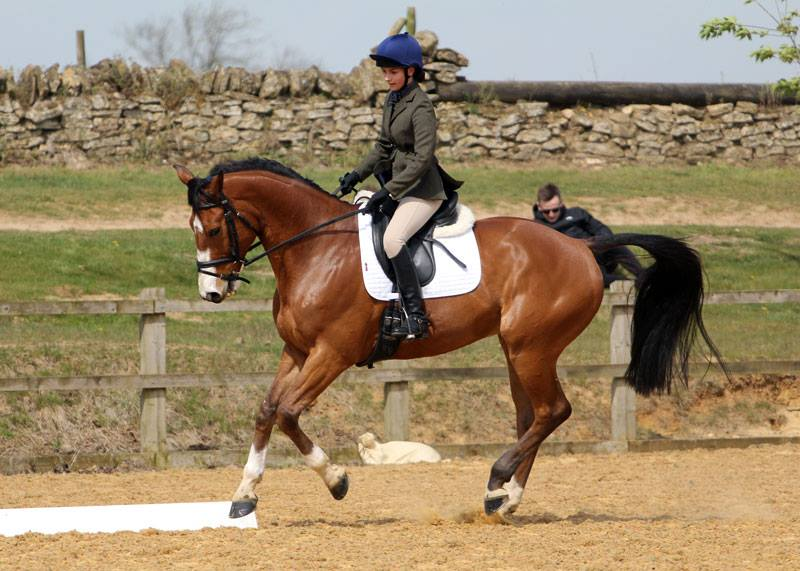 Rebecca Hall riding Olympic Du Loir at Wittering on 30 April 2017.