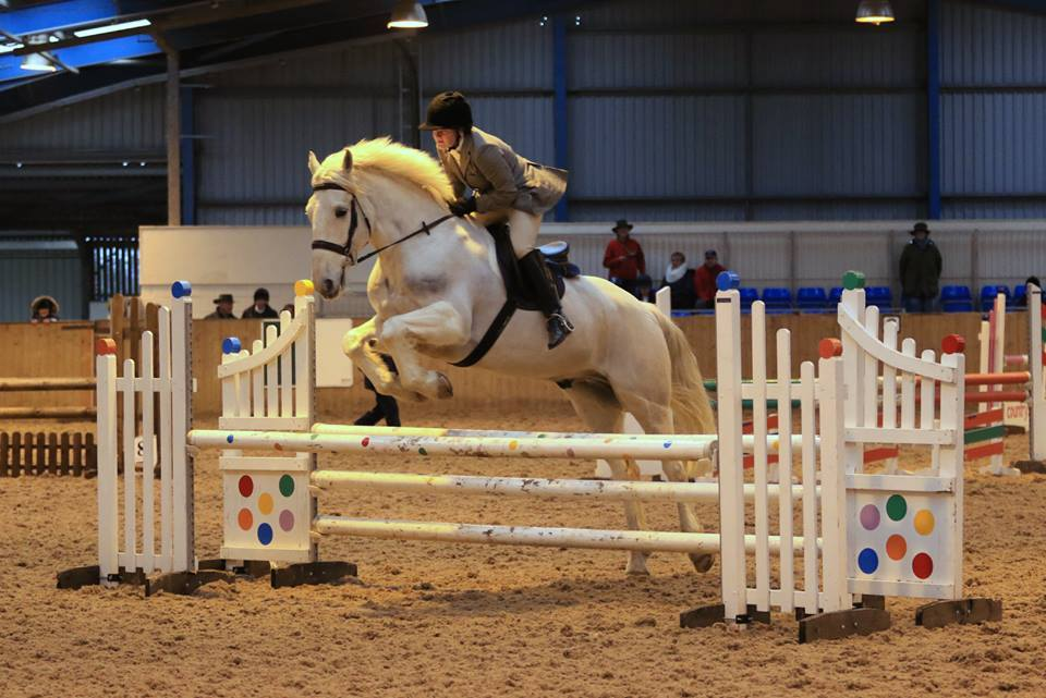 February 2017 - Area Qualifier show jumping at Brooksby .