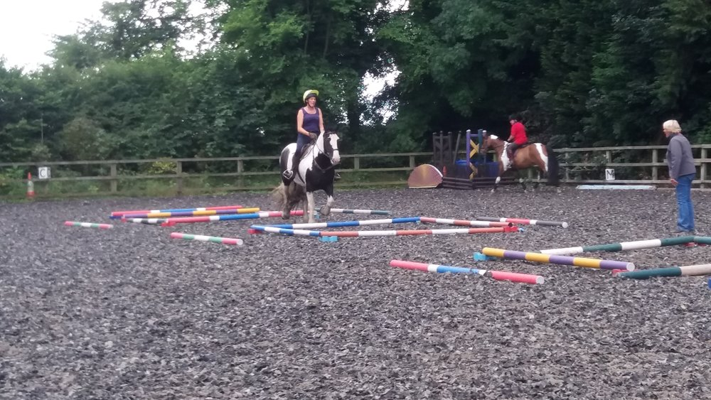Working hard at an Equigym Clinic July 2017 with Clare Llewellyn.