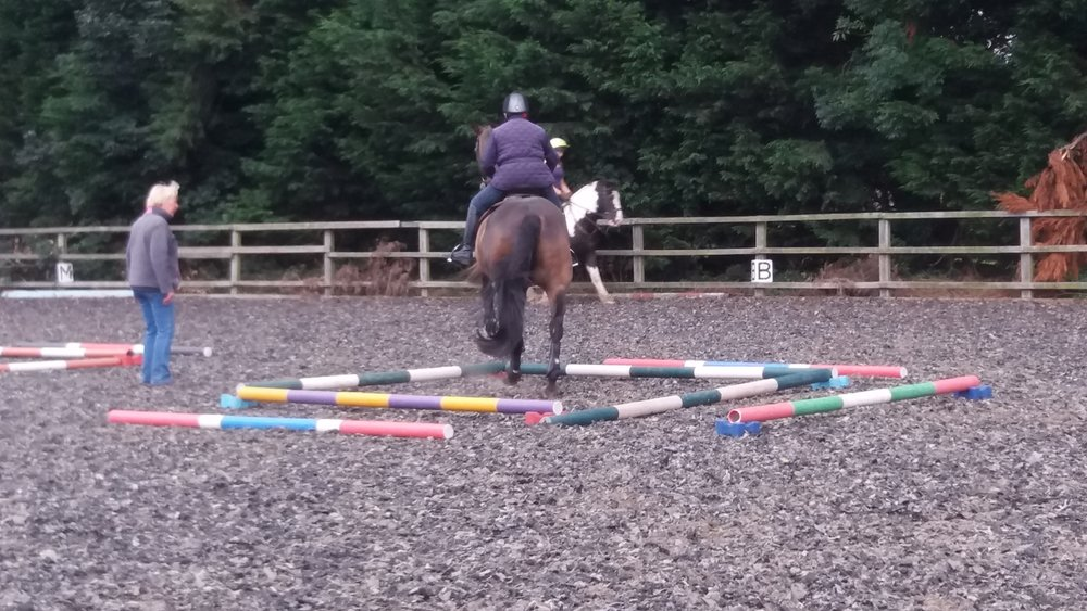 Accurate riding at Equigym Clinic July 2017.