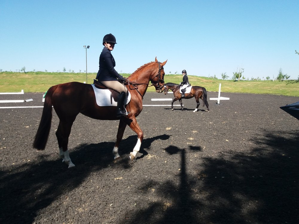 Dawn Ross and Annette Lumb preparing for the Intro Class at the May Dressage Competition.