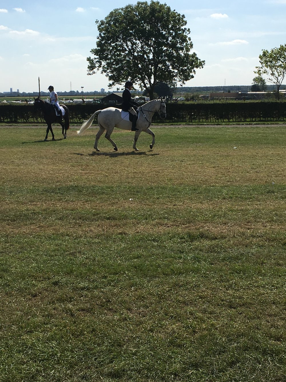 BRC National Dressage Championships 1st -2nd September - Caril McCarthy warming up.