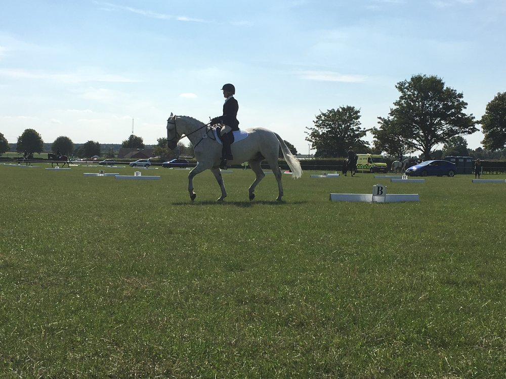 BRC National Dressage Championships 1st -2nd September - Caril McCarthy riding her test.