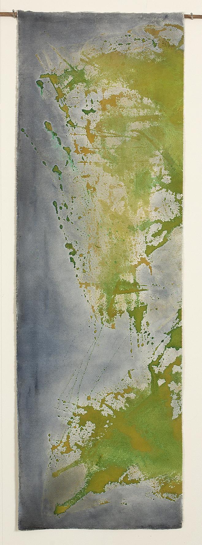 Amazonas VI