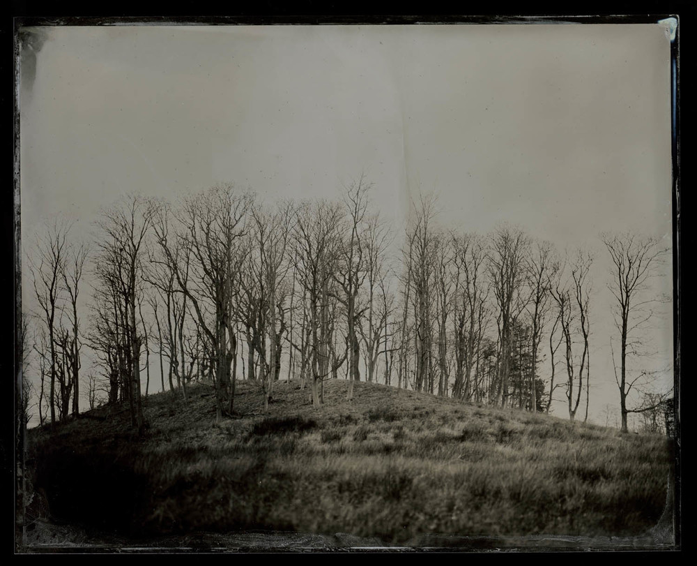 wetplate-scan166.jpg