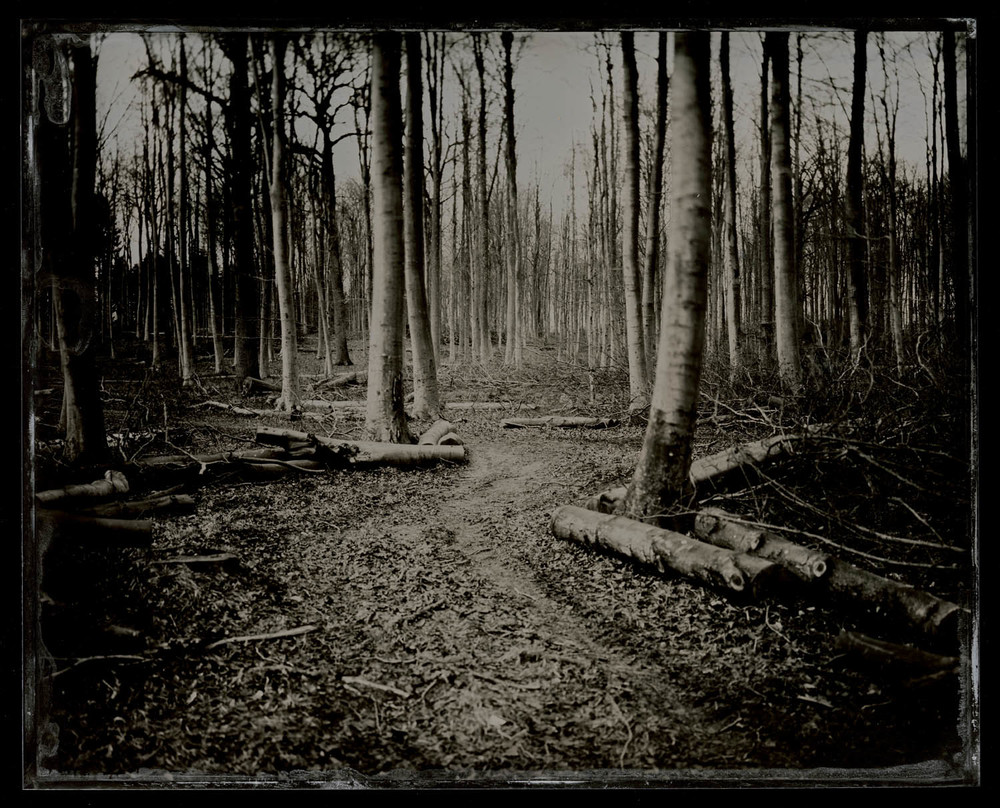 wetplate-scan175.jpg