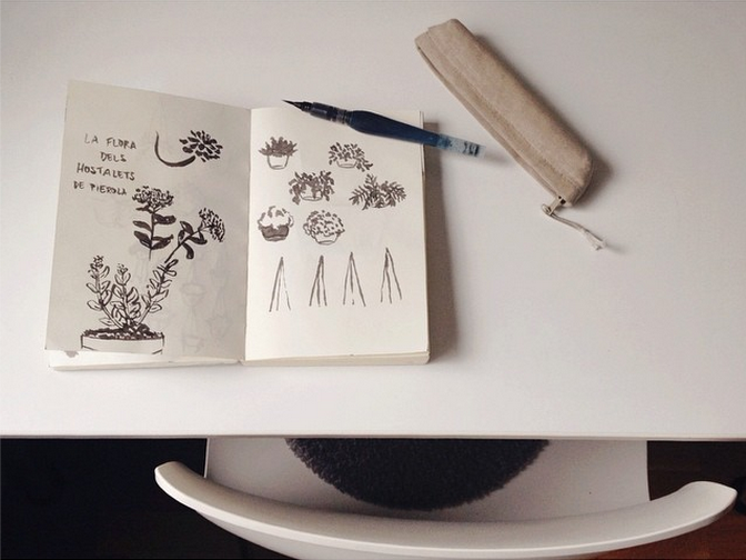 sketchbook florals plants working illustration.png