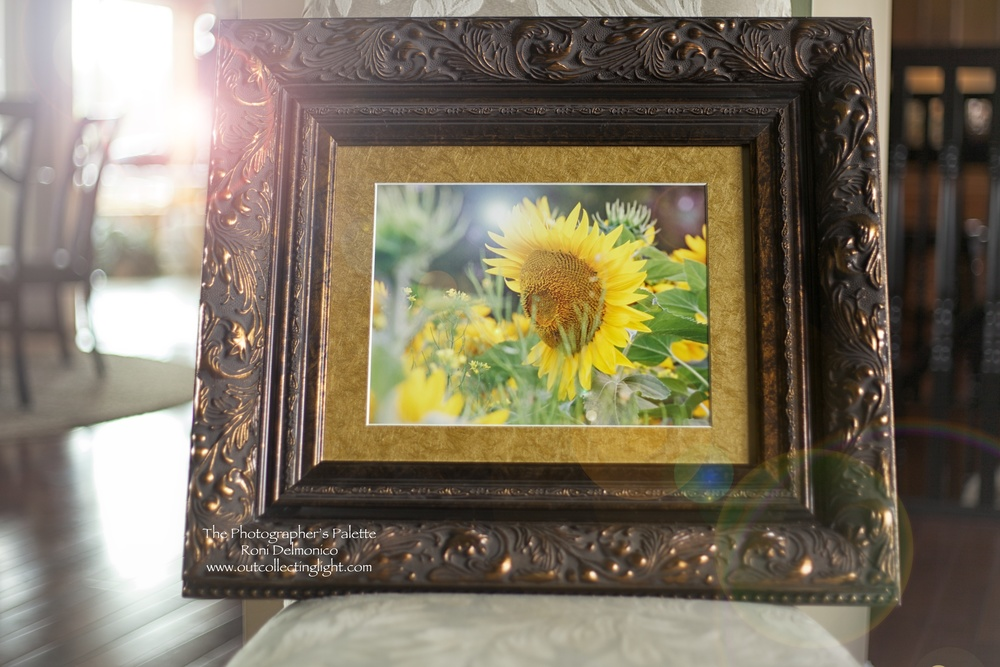 Artwork commissioned by Christine Doody for a friend who was battling cancer.  This piece now belongs to her husband and it hangs in their home, in memory of Aimee and the sunflowers she loved.