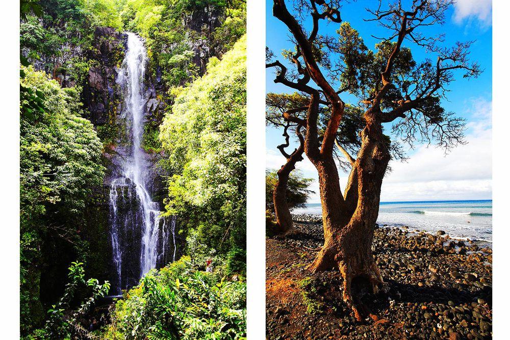 brian-wetzstein-hawaii-02.jpg