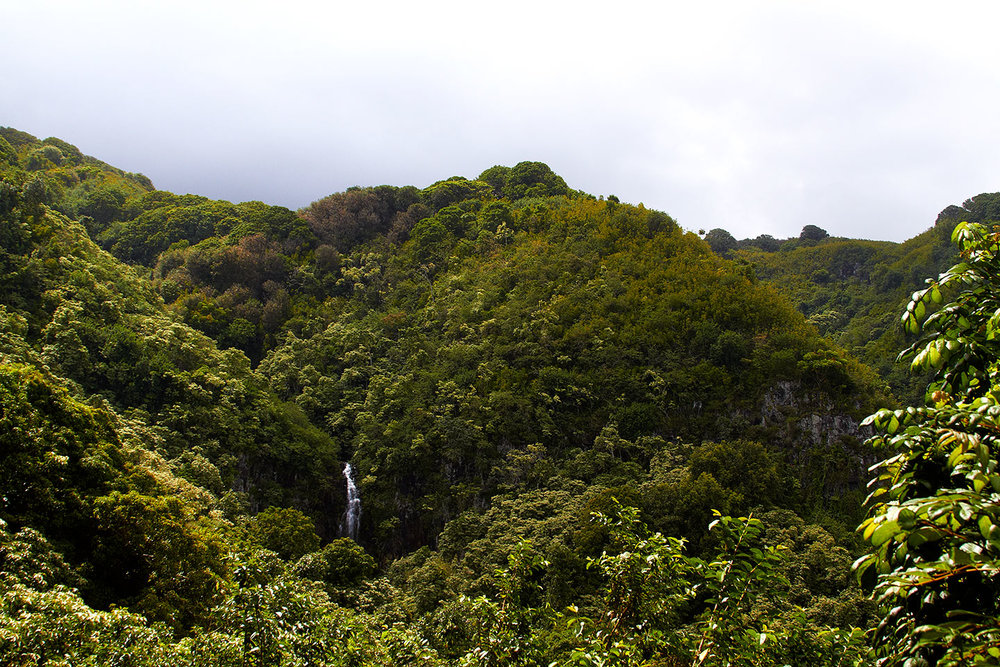 brian-wetzstein-hawaii-03.jpg