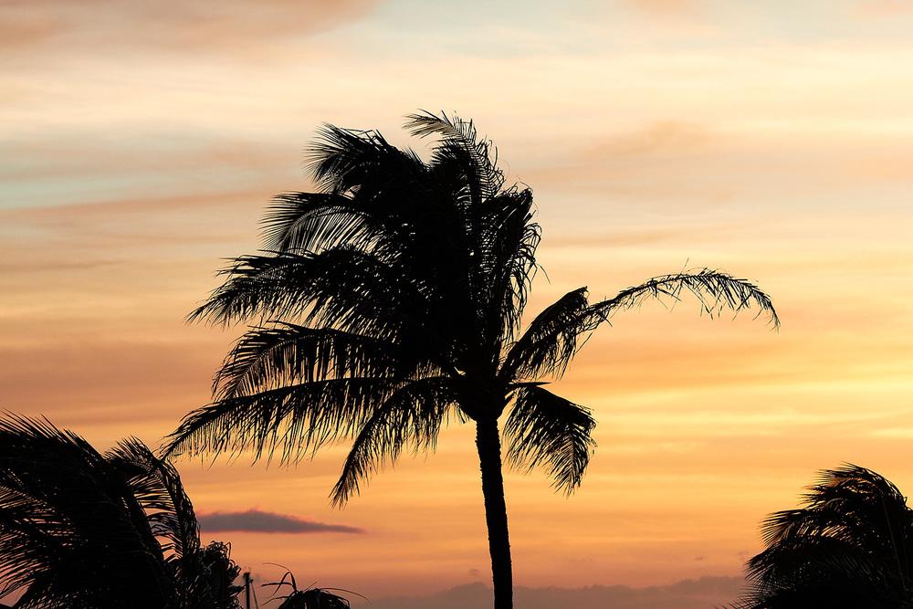 brian-wetzstein-hawaii-08.jpg
