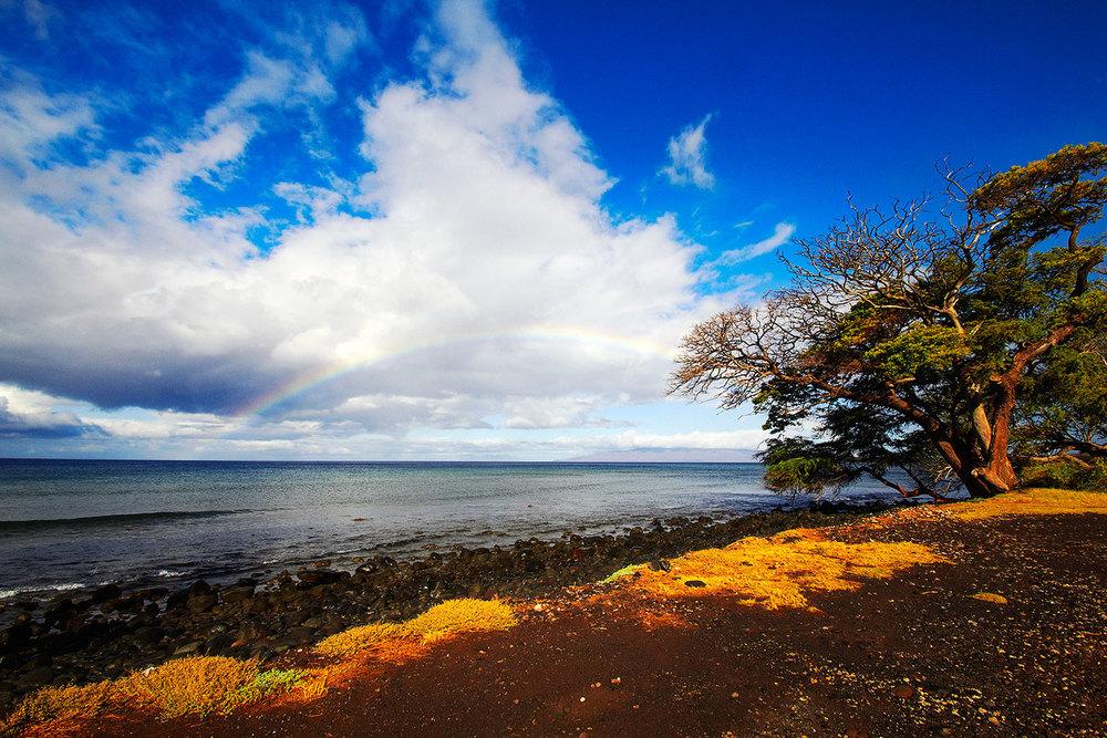 brian-wetzstein-hawaii-15.jpg