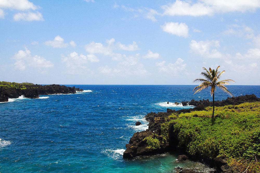brian-wetzstein-hawaii-18.jpg
