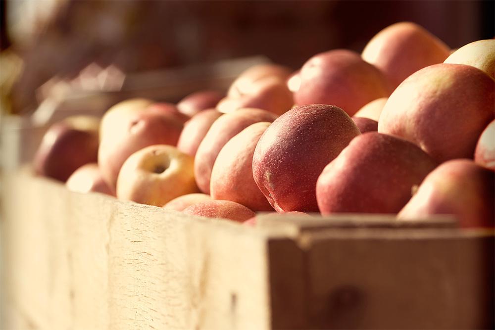 brian-wetzstein-apples-02.jpg