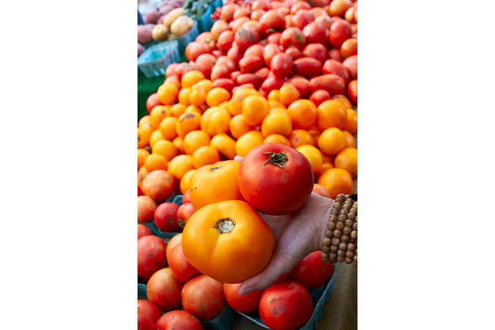 brian-wetzstein-tomatoes-001.jpg
