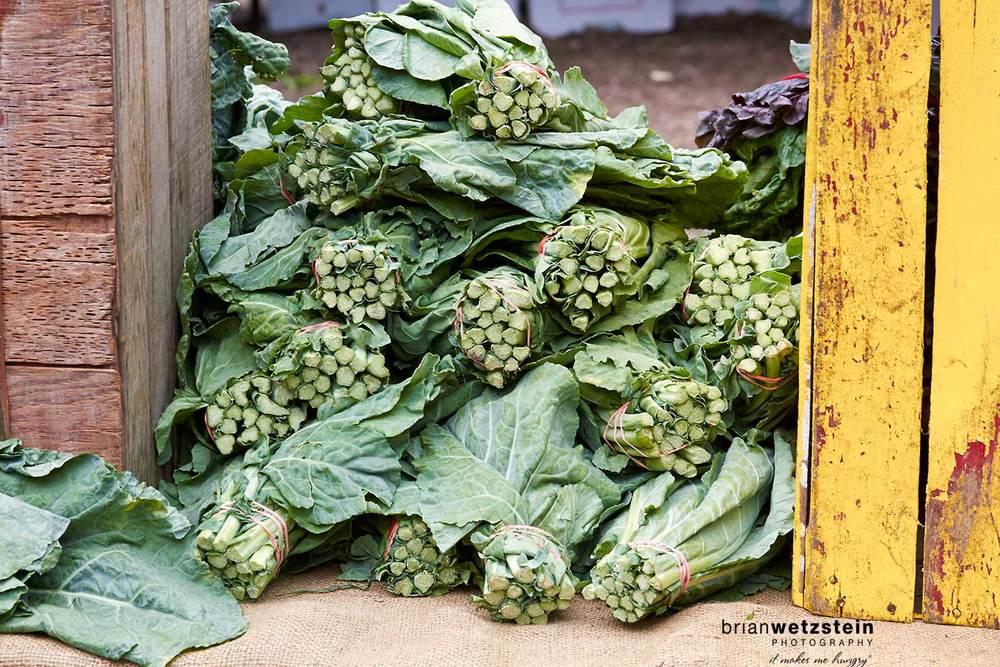 brian-wetzstein-asparagus-001.jpg