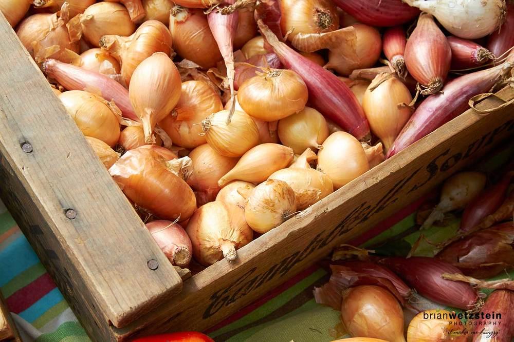 brian-wetzstein-farmers-market-onions-001.jpg