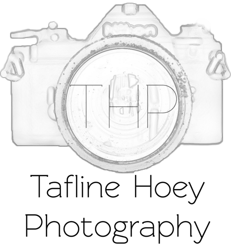 Tafline Hoey | Brisbane Photographer