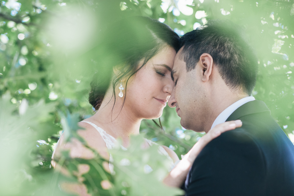 Hashemi_Wedding_Colour_High_Res-418.jpg