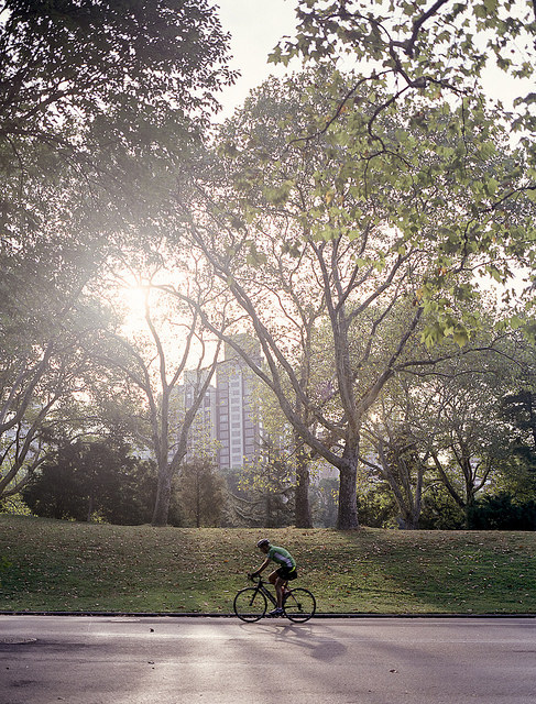 'Central Park Morning' - Central Park, New York City Mamiya 7 | Mamiya 43 f/4.5 | Fuji 400H (EI 100)
