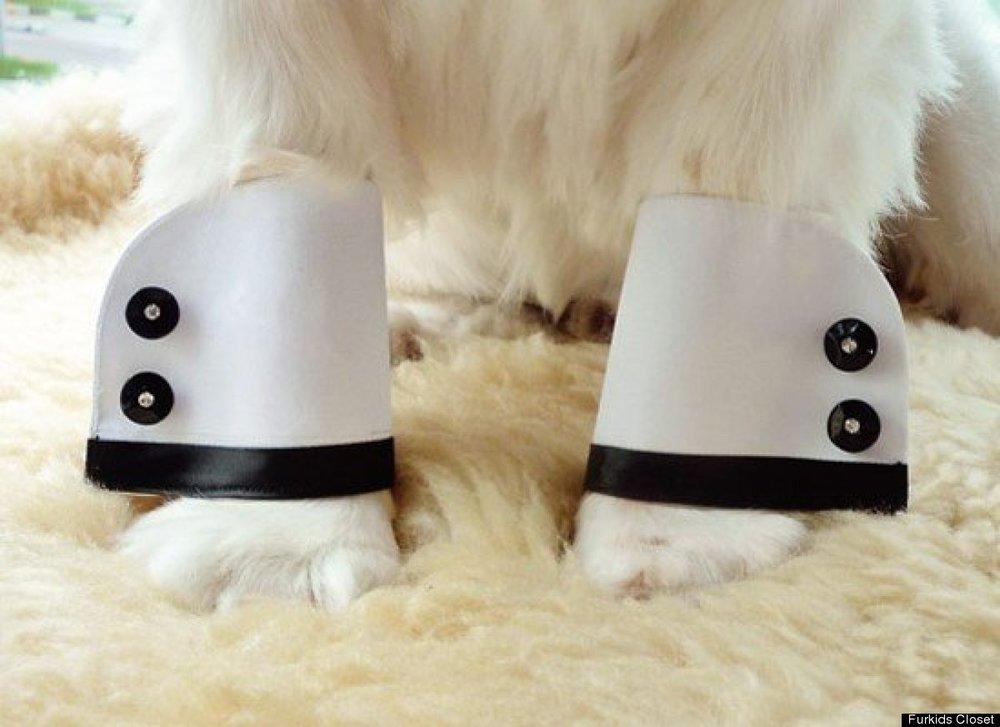 Dog Tux Cuffs.jpg